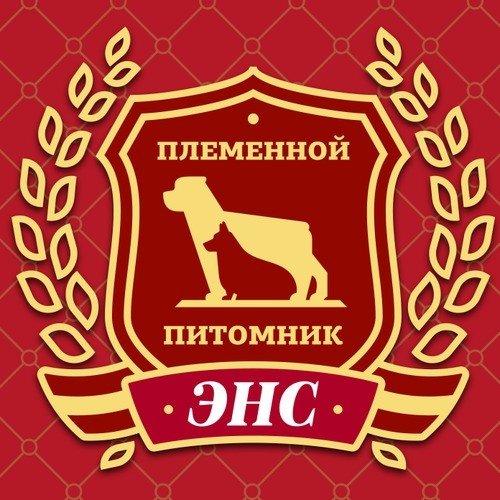 Питомник декоративных пород собак и кошек
