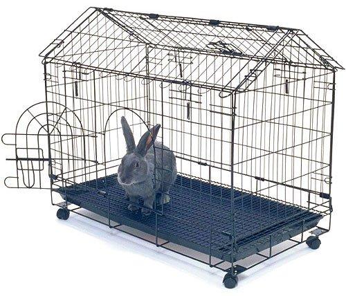 Как в домашних условиях содержать кролика в