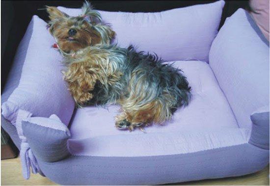 домик или лежанка для собаки своими руками фото 12