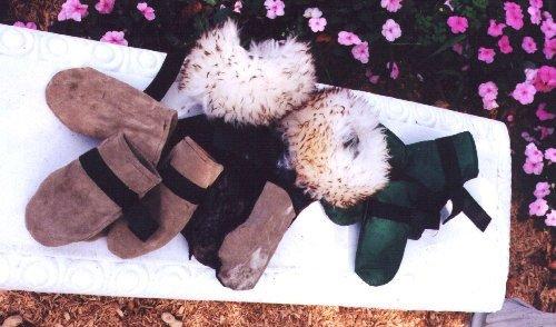 одежда для собак своими руками фото 4