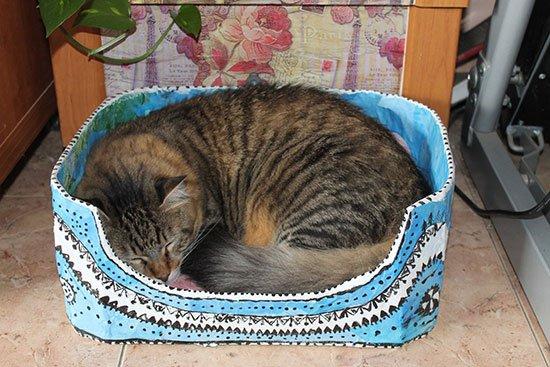 Лежанка для кошки своими руками фото 10