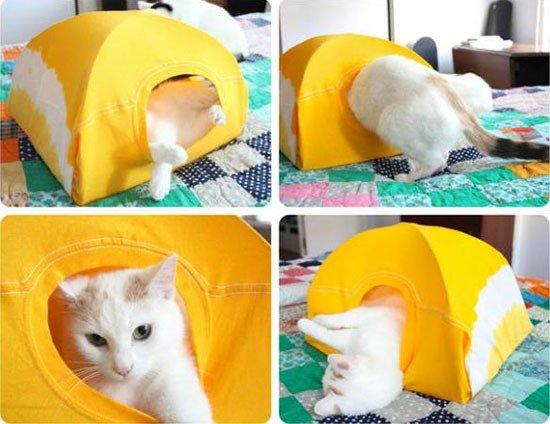 Как сделать кошке лежанку своими руками