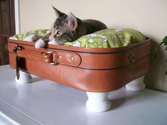 Лежанка для кошки своими руками фото 15