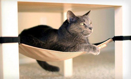 Лежанка для кошки своими руками фото 8