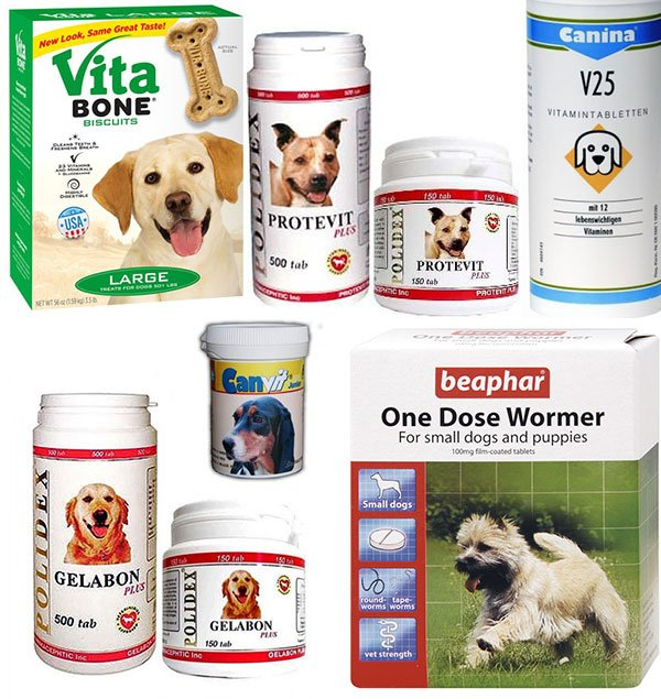 витамины для щенков и взрослых собак фото 1