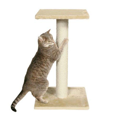 Когтеточка для кошек своими руками мастер класс видео