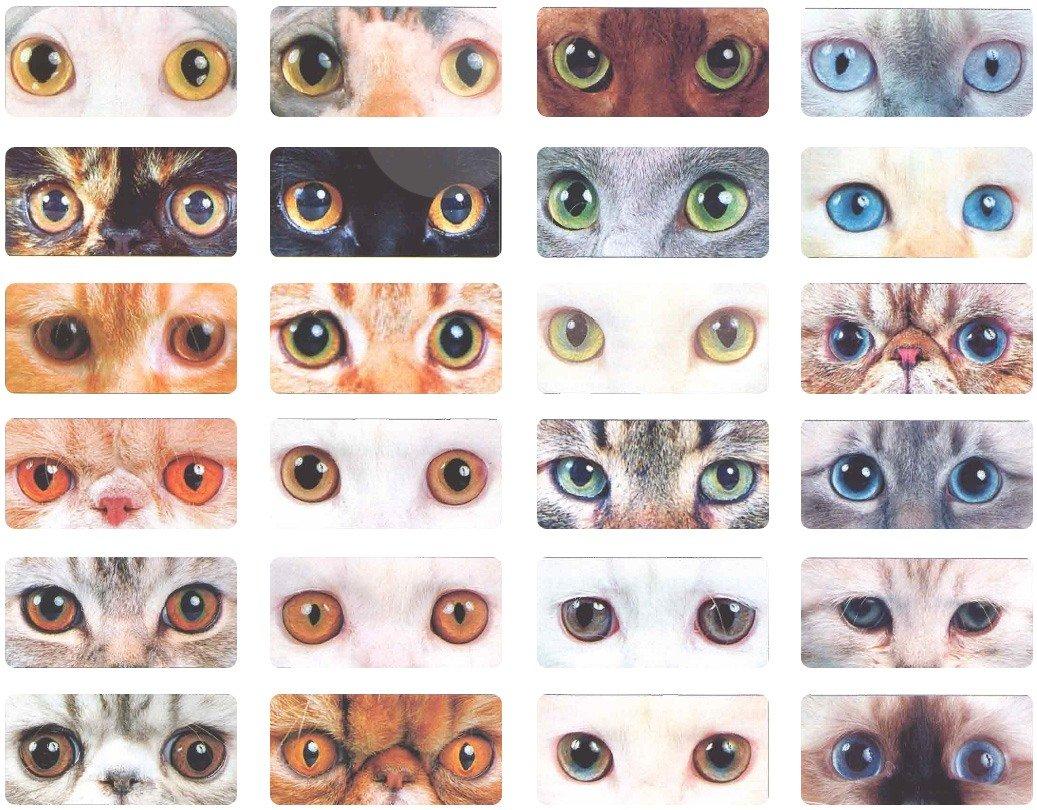 Как сделать глаза как у кошки макияж Визаж и здоровье глаз 90