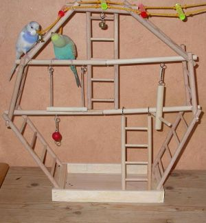 Сделать лестницу для попугая